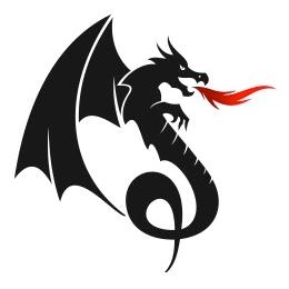 Dragon Training logo